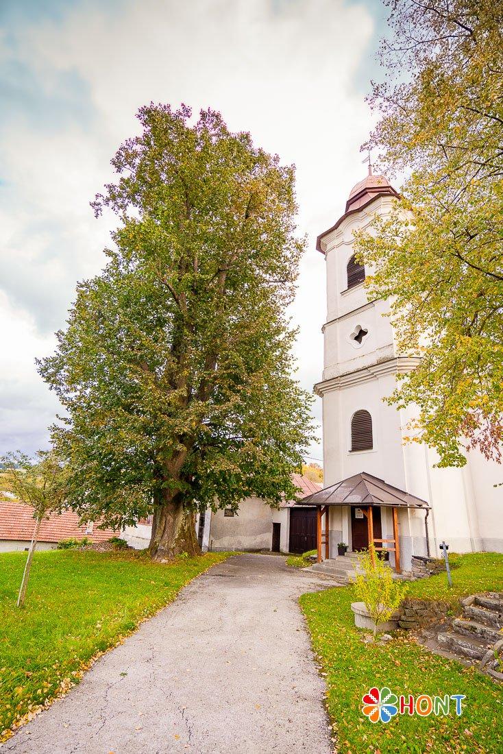 Evanjelický kostol v Hrochoti a lipa, pod ktorou sedával A. Sládkovič