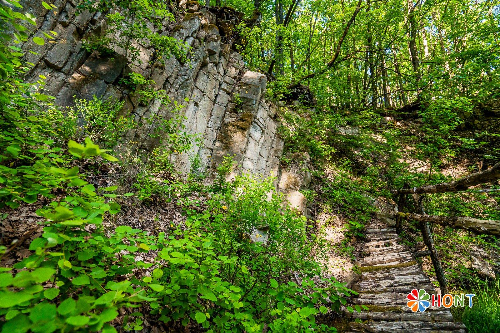 Prírodná pamiatka - chránené územie Sixova stráň